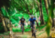 KeralaBackwaterCycling_lead.jpg.webp