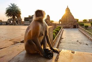 Itineraire-2-semaines-Inde-46.jpg.webp