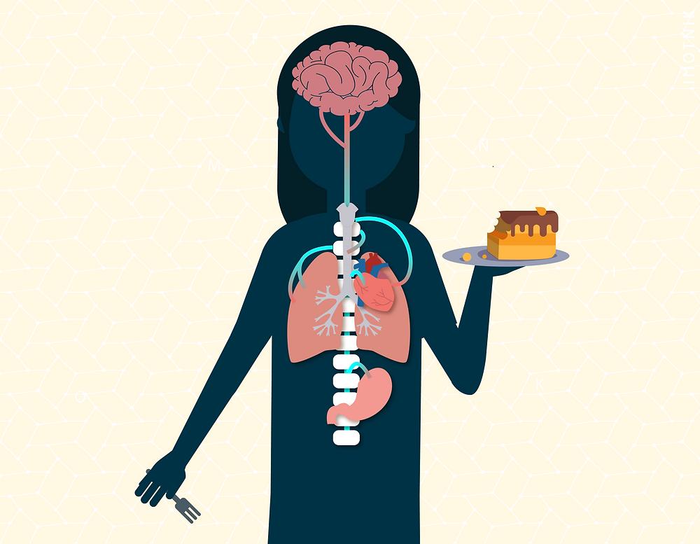 Ilustração mostrando o organismo da pessoa em ação.