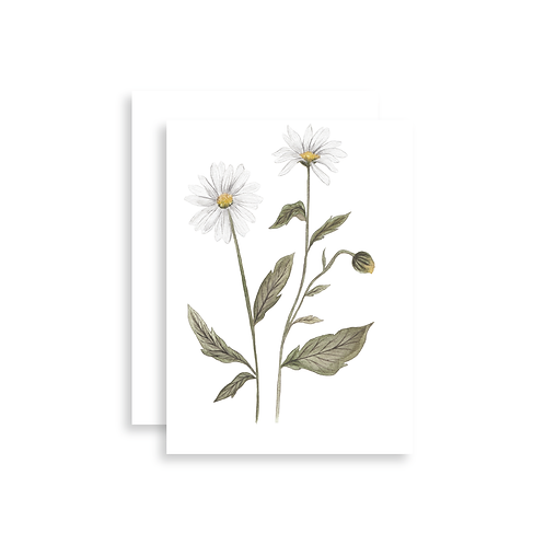 Oxeye Daisy Watercolor Card