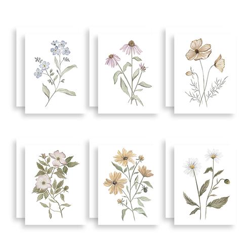 Wildflower Greeting Card 6 Pack