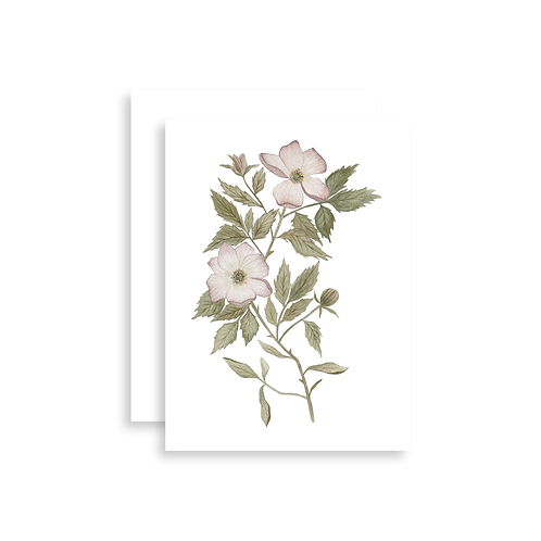 Wild Rose Watercolor Card