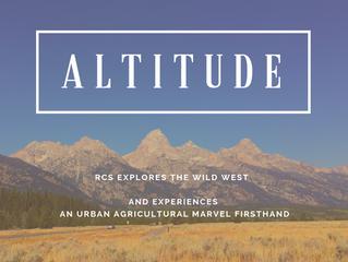 Provisions: Altitude