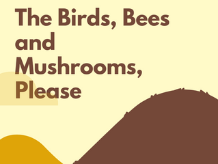 The Birds, Bees and Mushrooms, Please