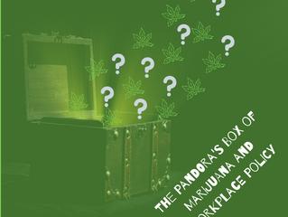The Pandora's Box of Marijuana and Workplace Policies