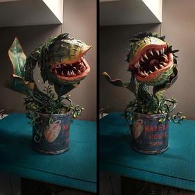 Fixieren am Pflanzen-Strunk
