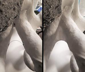 Aufspannen der dünnen Hautschicht zwischen den einzelnen Tentakeln: Papiermachée über einen gebogenen Draht gespannt.