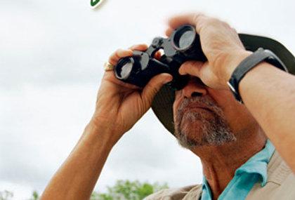 Bird Watching for Beginners