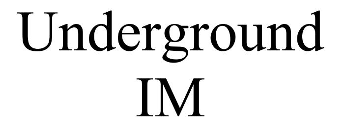3 Underground IM Secrets (Internet Marketing)