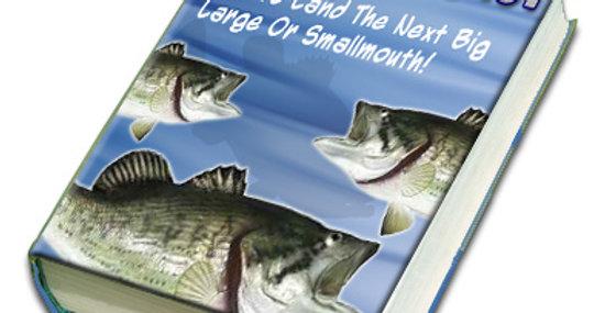 Bass Fishing 101 eBook + 50 Articles + 5 eCourse Set & More