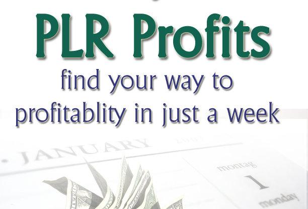 7 Days to PLR Profits