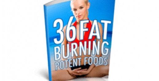 36 Fat Burn Food