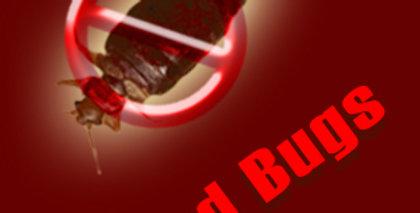 Bed Bugs eBook + 50 Articles + 5 eCourse Set & More - 50% Discount