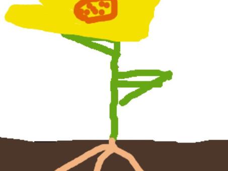 Plant animations