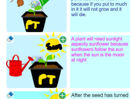 Growing a Plant