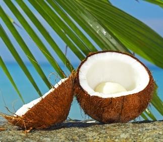 Coconut Oil - The Latest Press