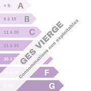 GES (7).png
