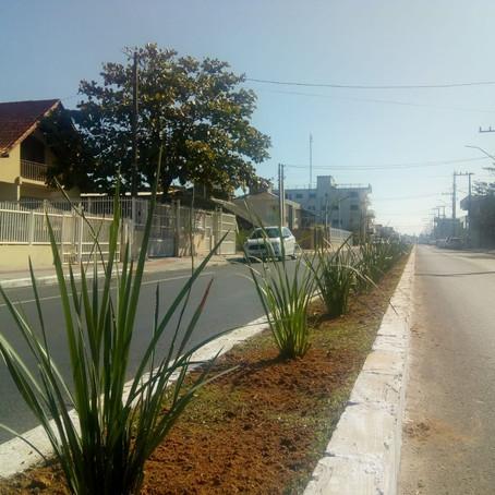 Gaivota: Avenida Santa Catarina de cara nova!