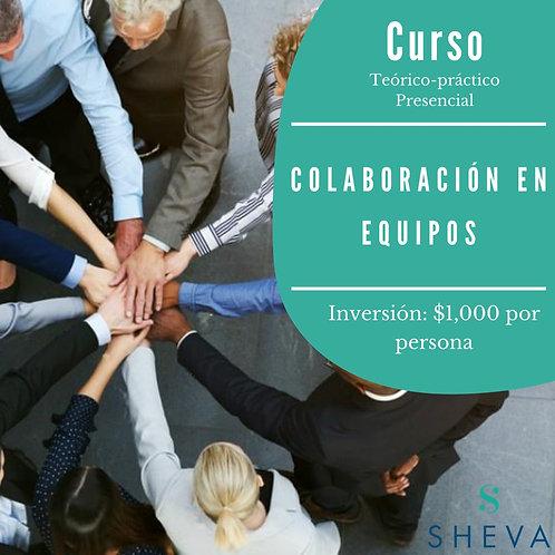 """Curso presencial """"Colaboración en equipos"""""""