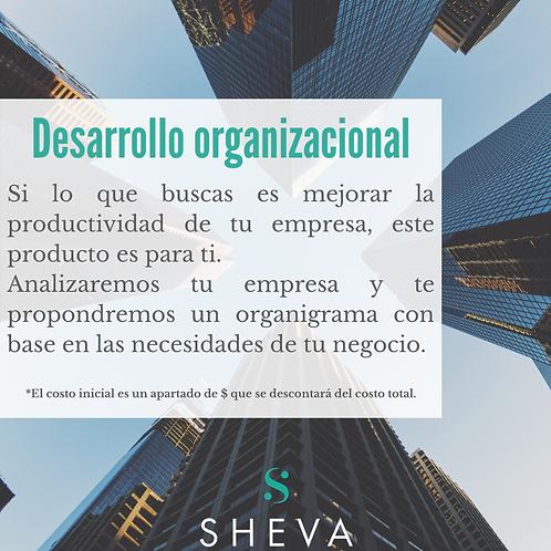 Desarrollo organizacional para PyMEs