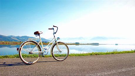 Bicicletta-cosa-vedere-a-vienna_edited_e