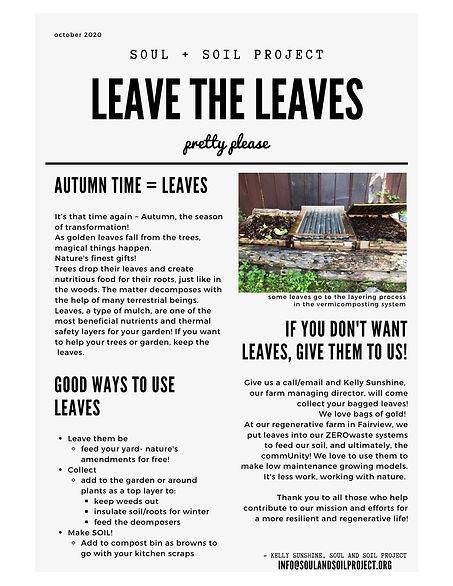 Leaves Email.jpg