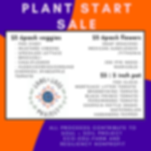 plant solidarity sale IG (7).png
