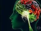 Jogos online contra o Alzheimer