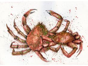 Crabtivating!