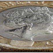 Macro £1 Coin