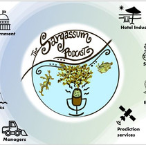 49: Sargassum Podcast, International