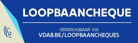 369268-logo_loopbaancheques-c20ad.w1024.