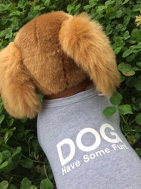わんちゃんも家族!犬とのペアTシャツ