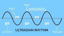 PRODUCTIVITY AND ULTRADIAN RHYTHMS – HOW TO FOLLOW YOUR NATURAL RHYTHMS TO ACHIEVE MORE.