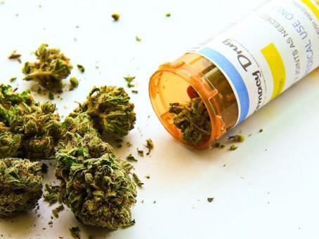 """¿El Instituto Nacional del Cáncer """"finalmente admitió"""" que la marijuana destruye el cáncer?"""