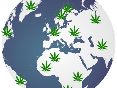 La Organización Mundial de Salud recomienda reclasificar la Marihuana en tratados Internacionales