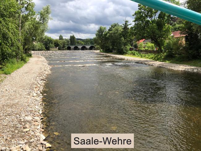Saale-Wehre