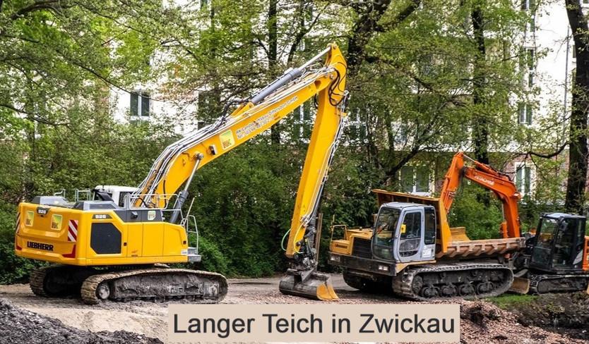 Langer Teich in Zwickau