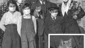 The 1918 Flu Epidemic and Arthur Carhart