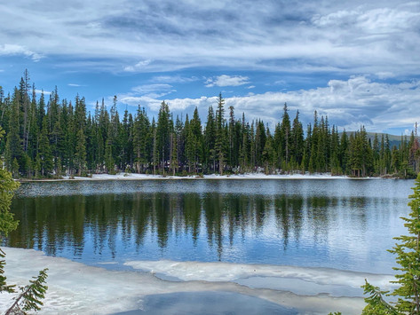 Pristine Lake by Luz Newton