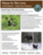 Moose Brochure.JPG