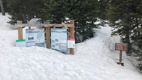 Epic Snowpack in the High Country