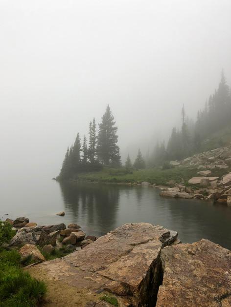 Mountain Mist by Ellen Steiner