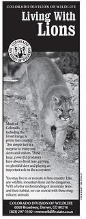 Lion Brochure.JPG