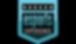 eSports-600-01.png