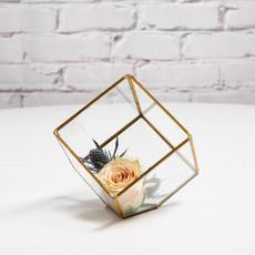 Terrarium verre et or