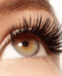 Lash extensions offering lenght and volume for a natural looking lah enhancement.