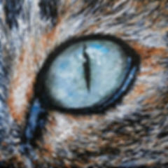 cat eye painting by Melissa Barbee