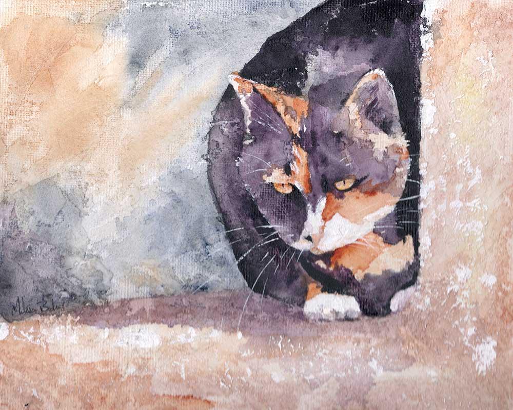 Dottie by Melissa Barbee