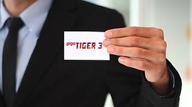 Logo_Tiger3 erp_eMagaza.png